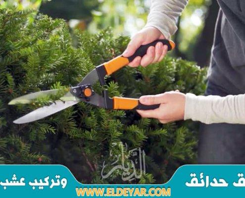 عامل قص اشجار بجازان متخصص في تقليم كل أنواع الأشجار وعلى مستوى عالي من الاحترافية والدقة